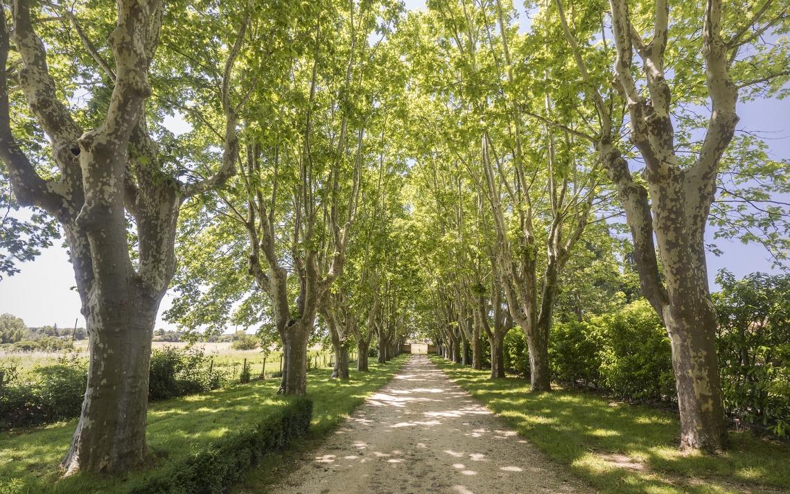 bastide-vente-provence